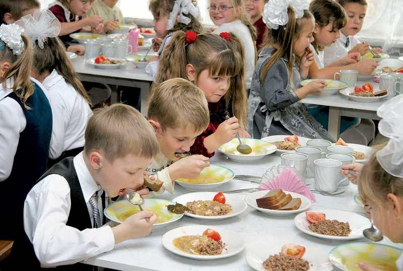 Школьные обеды из дома правила и необходимость