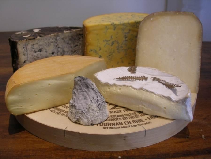Что нужно знать о сыре?