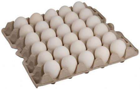 Снова о яйцах. Часть первая